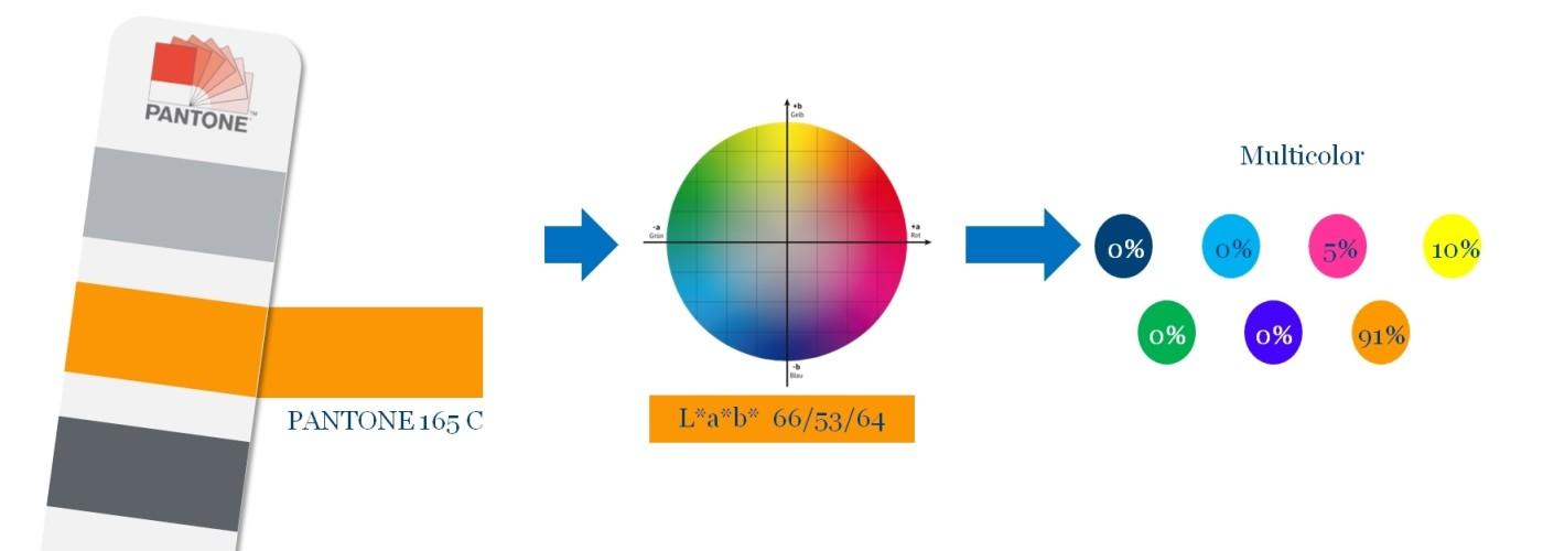 Multicolor20DE20EN