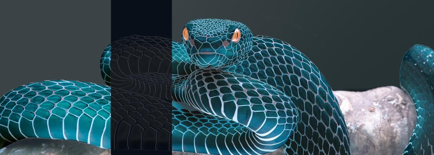 Double-coating presses and haptic finishing effects